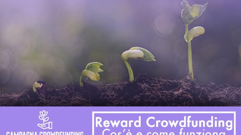 Reward Crowdfunding